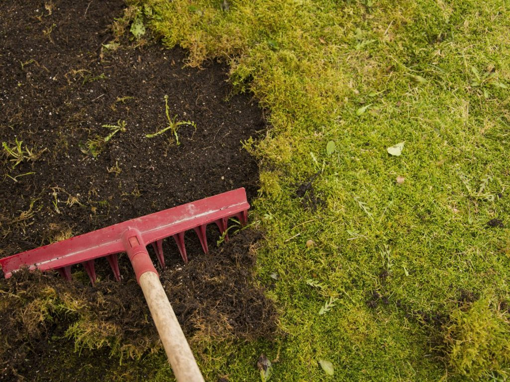 Kill Moss and Maintains your Lawn