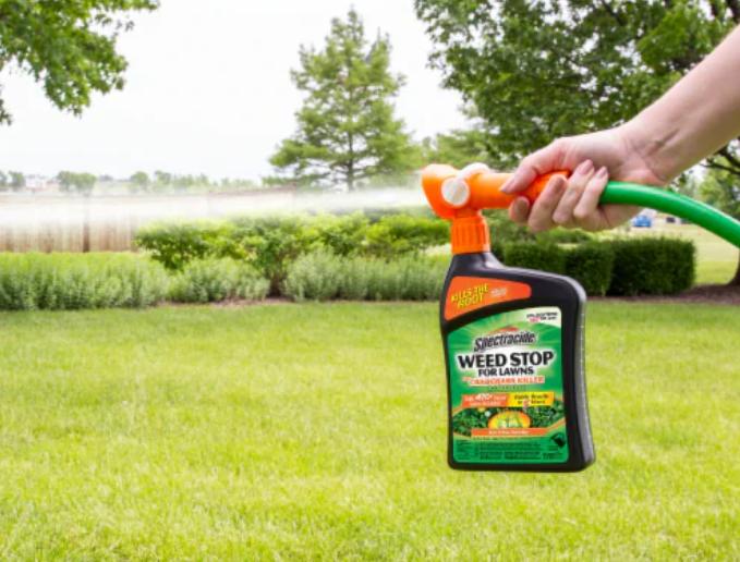 weed killer Ready to Spray