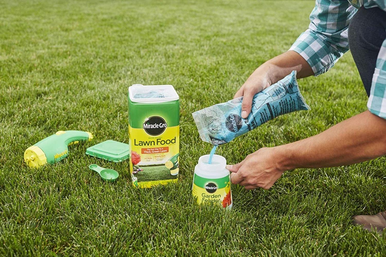 best fertilizer for st augustine grass