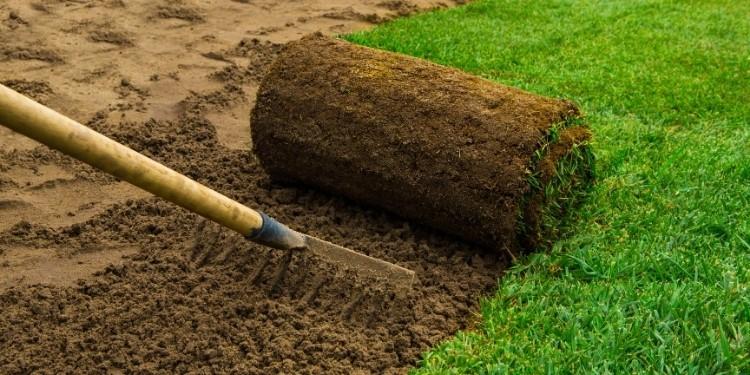 Soil Preparation For St Augustine Grass